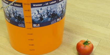 10 Liter Virtuelles Wasser für eine Tomate